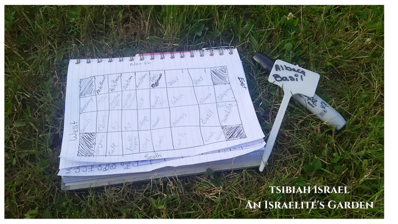 Garden Layout: Companion Planting - An Israelite's Garden